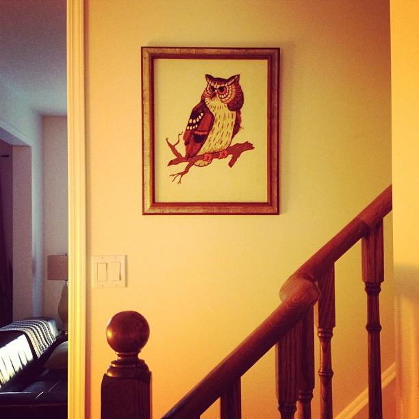 Crewel Owl in Frame